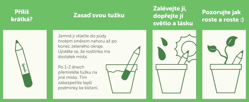 Rastúce tužky Dedoles návod k pěstovaní