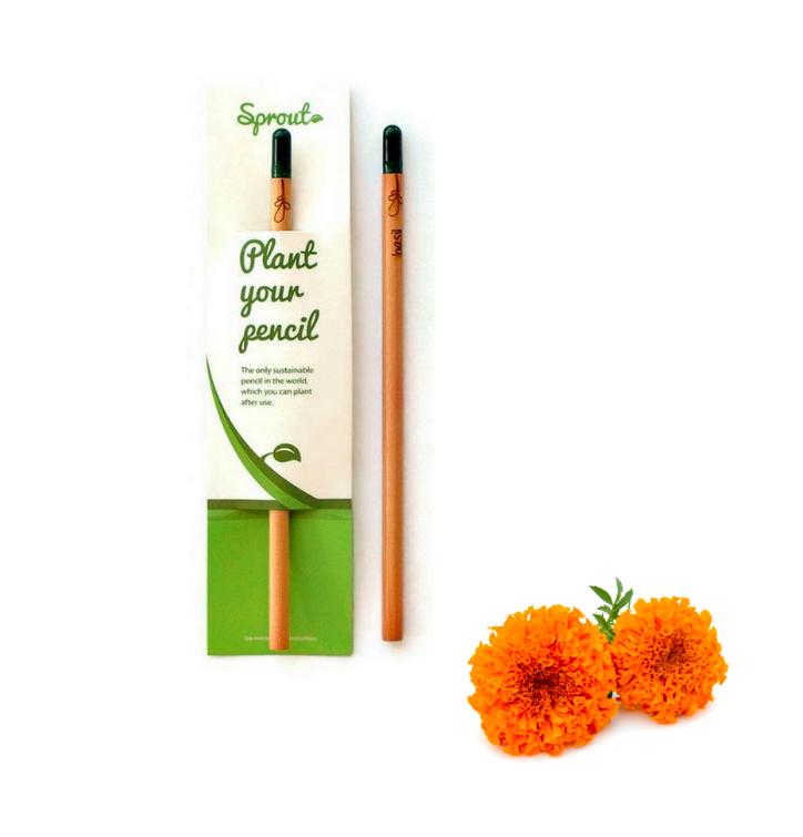 Plant Your Pencil – Marigold