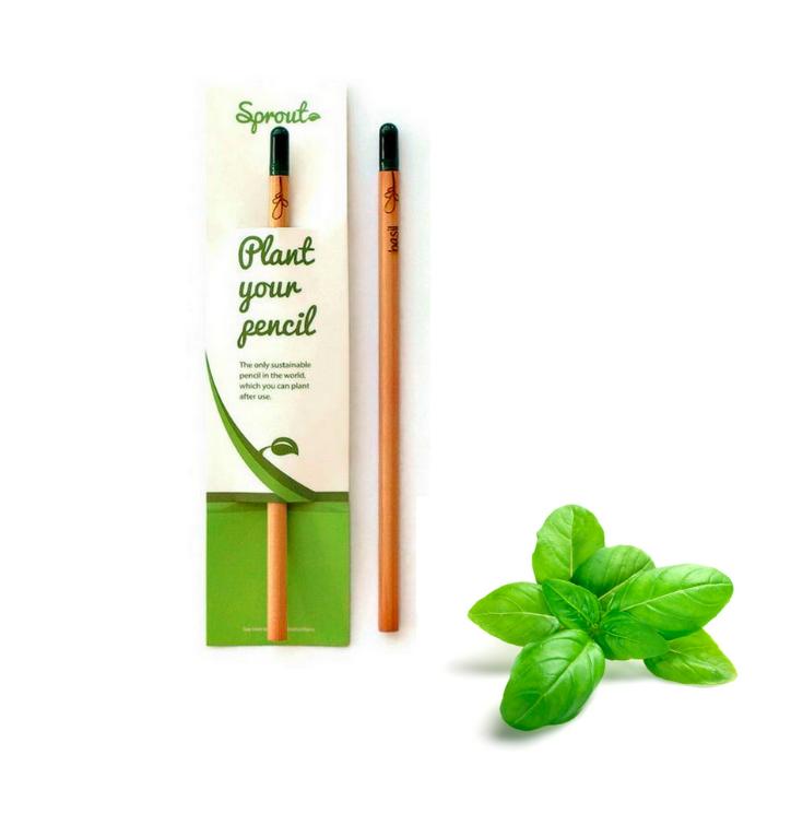 Plant Your Pencil – Basil