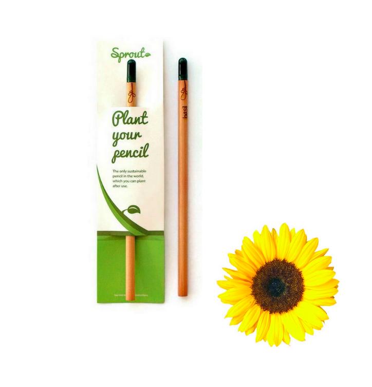 Plant Your Pencil – Sunflower
