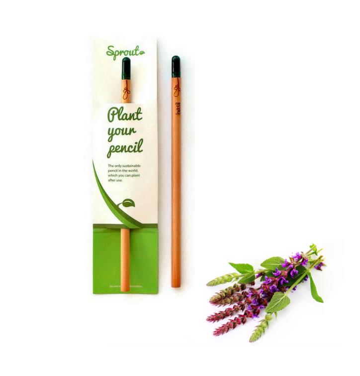 Plant Your Pencil – Sage