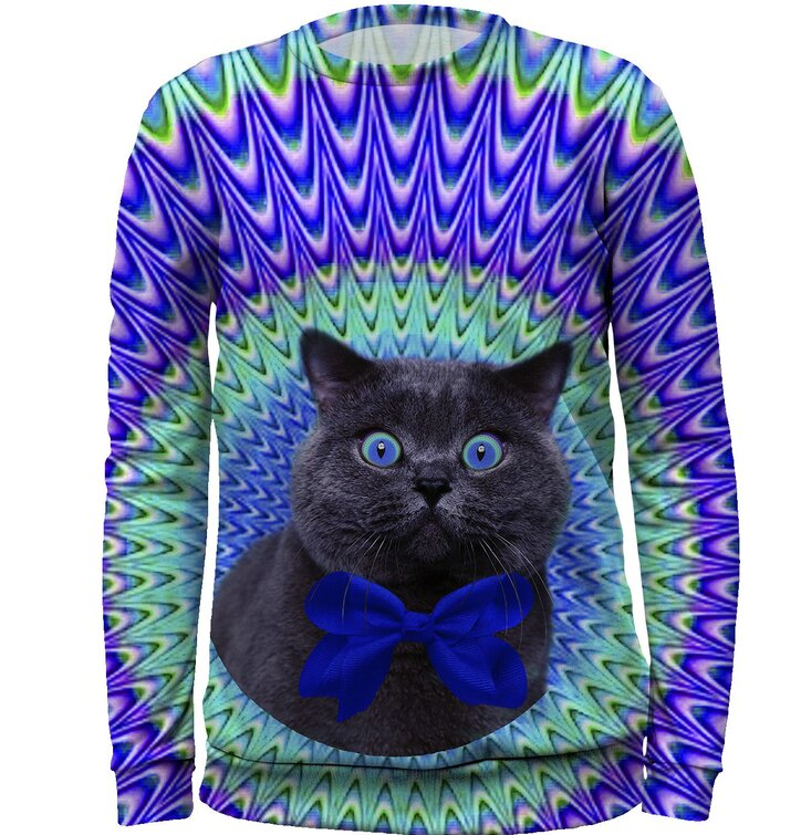 Kids' Sweatshirt Crazy Cat
