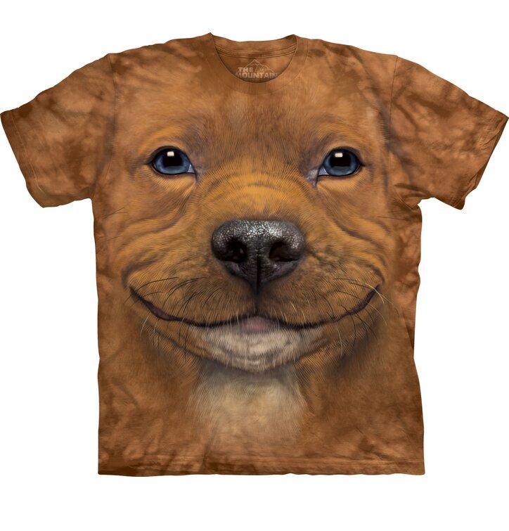 Brown T-shirt Pitbull Puppy
