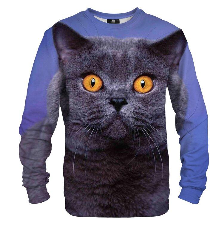 Pulover brez kapuce Britanski maček