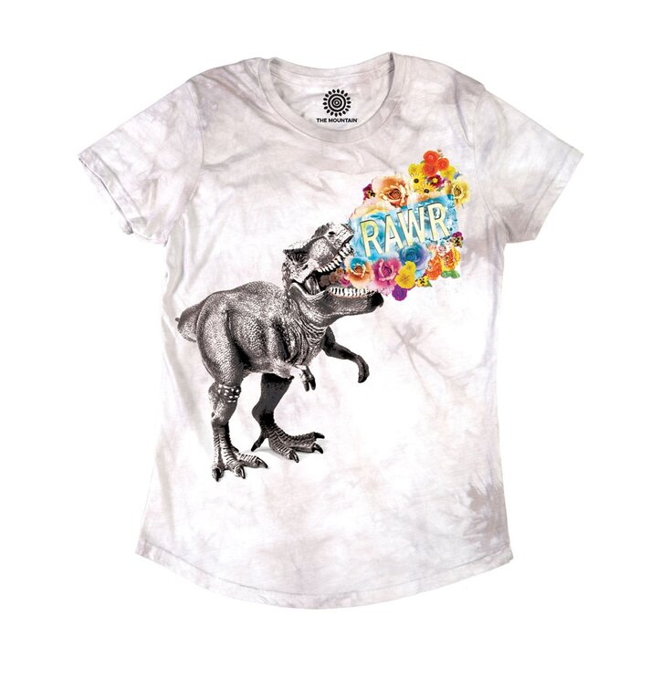 Damen Tri-Blend T-Shirt Tyrannosaurus Rex