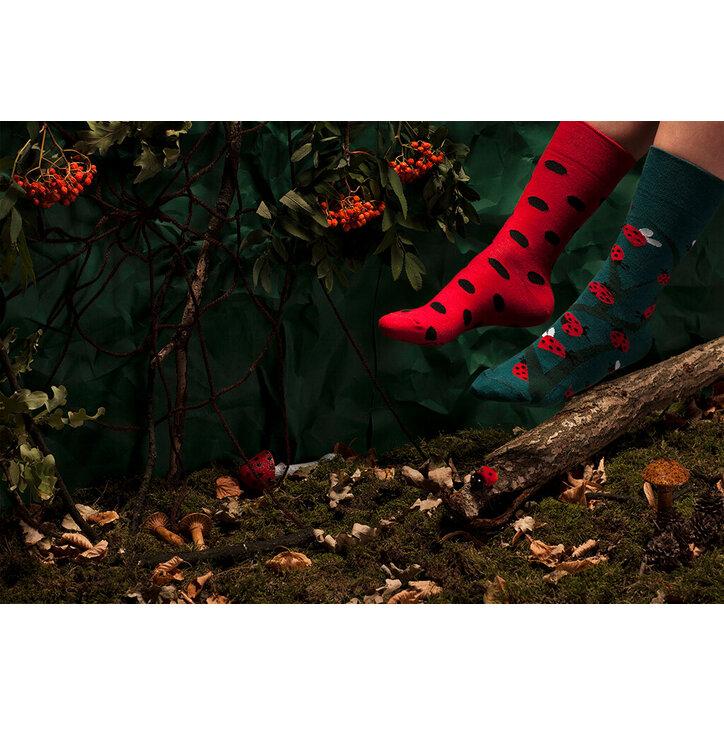 Lifestyle foto Veselé ponožky Many Mornings Berušky bba5d2de0d