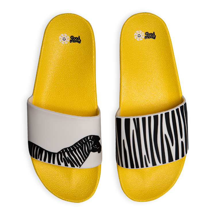 Slides Zebra