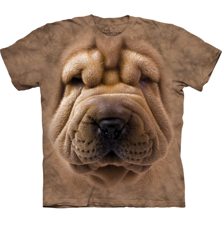 Big Face Shar Pei Adult