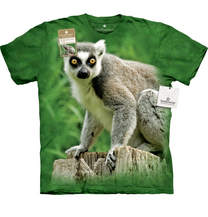 Ring Tailed Lemur Adult