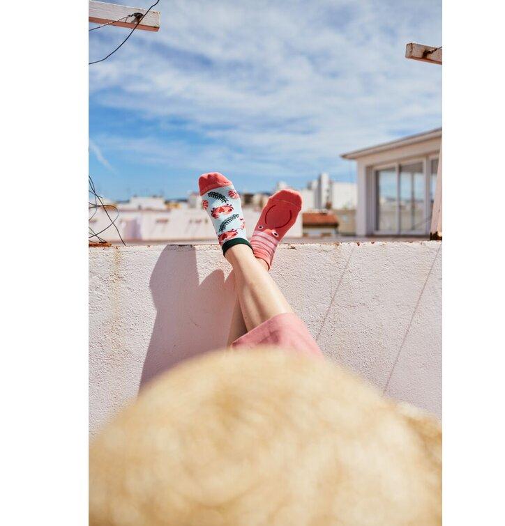 b9d4b3de101 Lifestyle foto Veselé kotníkové ponožky Kraby a krevety