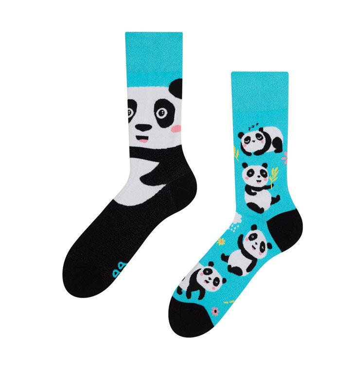 Lustige Socken Panda