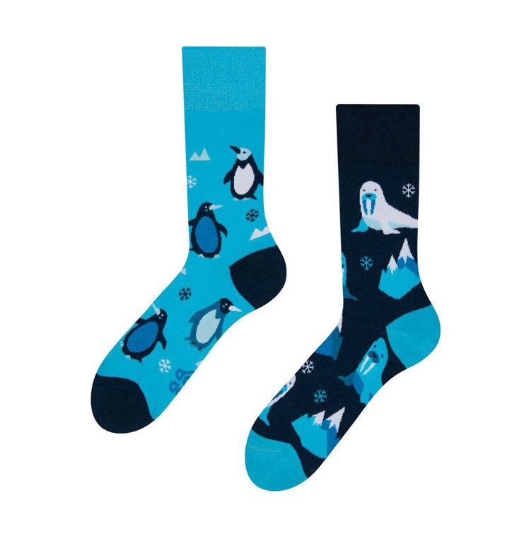Veselé ponožky Polární zvířata