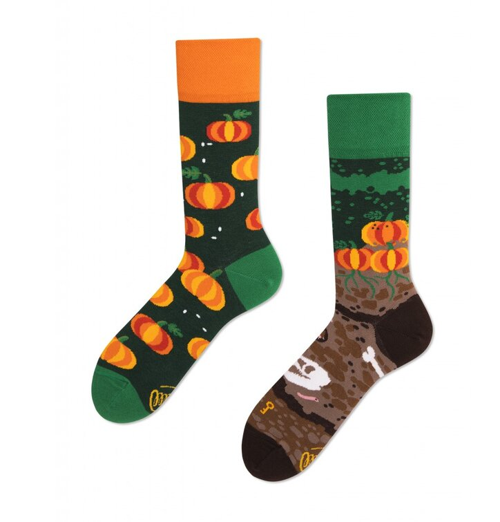 Lustige Socken Kürbisse