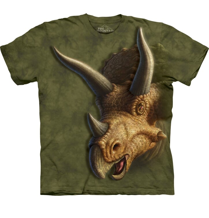 Triceratops Head Child