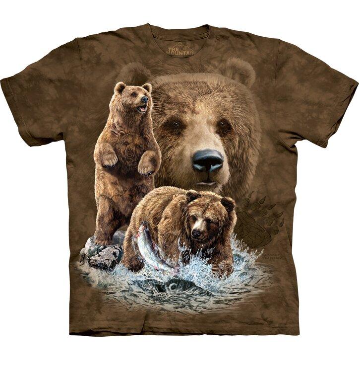 Find 10 Brown Bears Child