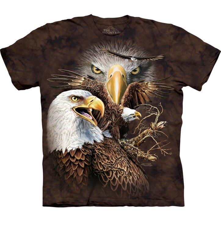 Find 14 Eagles Child