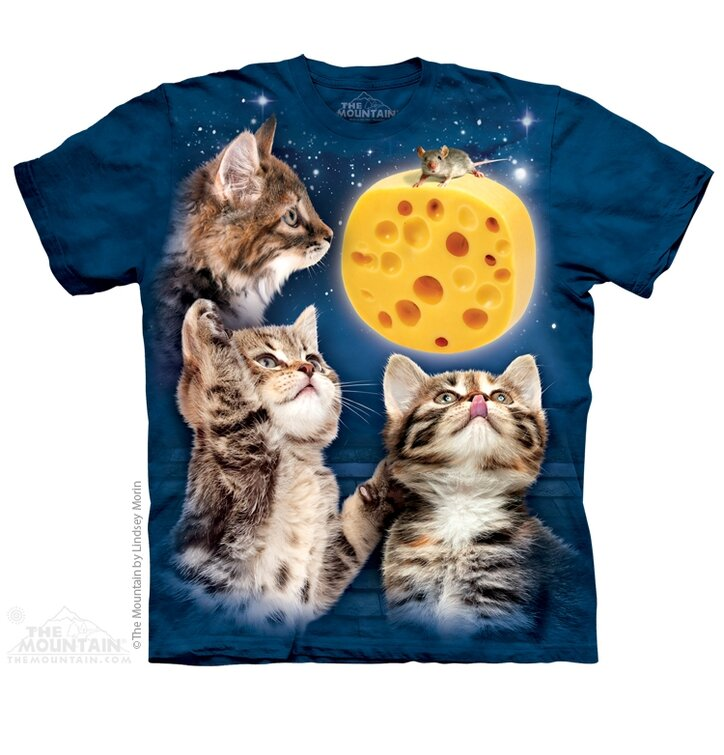 3 Kitten Cheese Moon