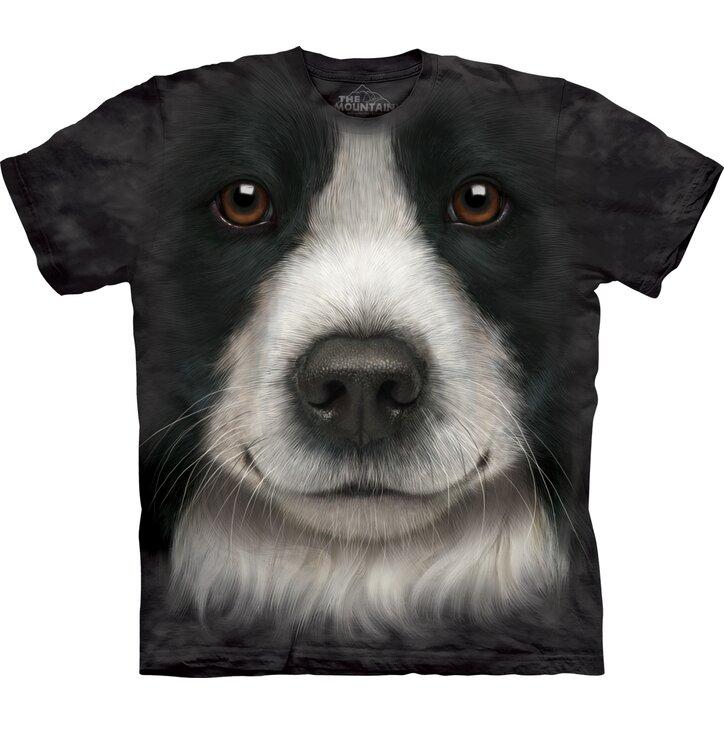 Border Collie Dog Face Child