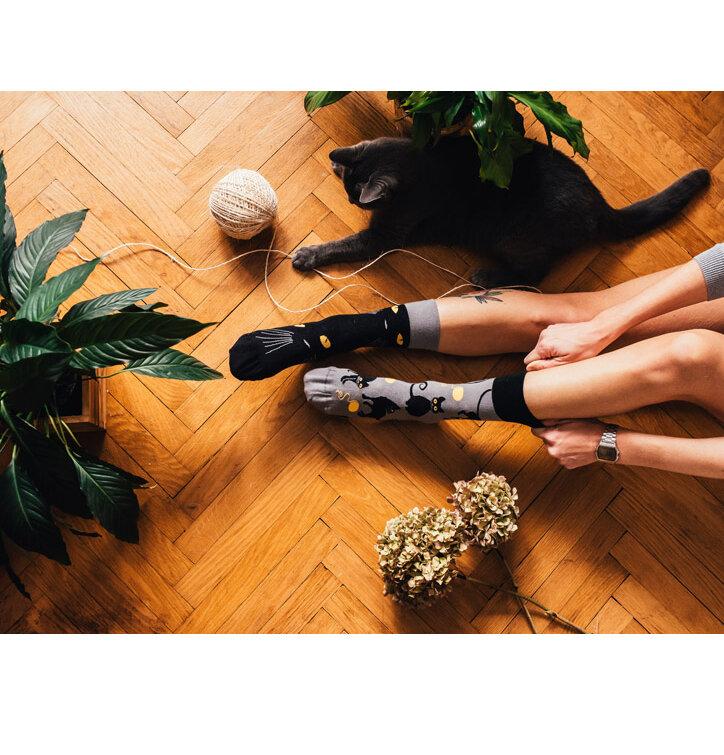 Tip na dárek Veselé ponožky Kočky 9d09eff75b