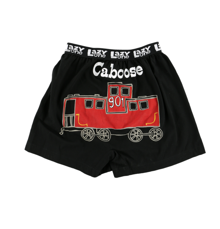 Výjimečný dárek od Dedoles Vtipné dětské boxerky Parná lokomotiva f362e3ab1e