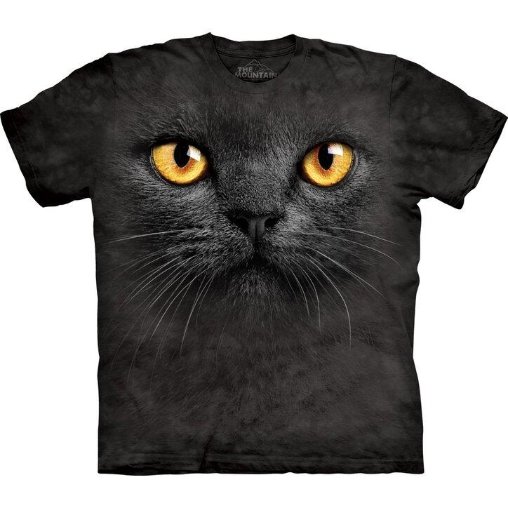 chlupatá kočička černá kuřata