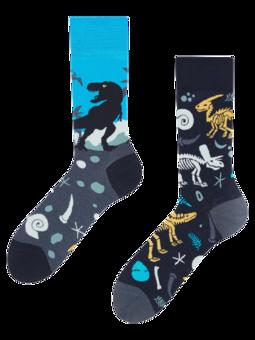 Regular Socks Dinosaurs