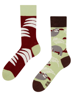 Regular Socks Sloth