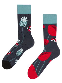 Regular Socks Ladybugs & Poppy Flowers