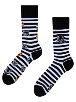 Regular Socks Cats & Stripes