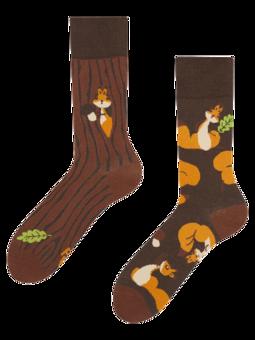 Vrolijke sokken Eekhoorns