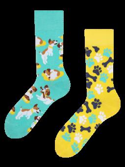 Весели чорапи Щастливо куче