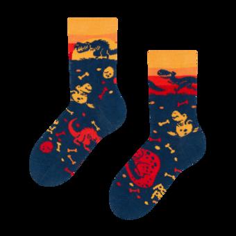 Kids' Socks Dinosaur World