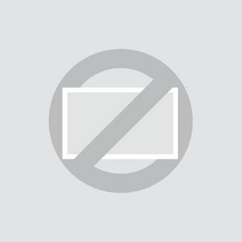 Calcetines alegres - Caballos salvajes
