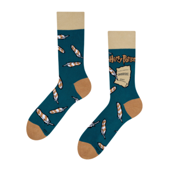 Calcetines alegres Harry Potter™ - Wingardium Leviosa