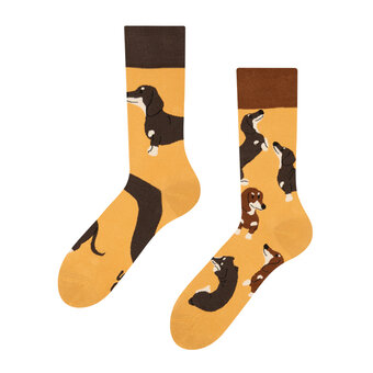 Regular Socks Dachshunds