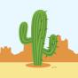 Lustige Socken Kaktus