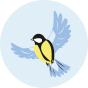 Veselé silonky Zimný vtáčik
