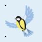 Lustige Nylonstrumpfhosen Wintervogel