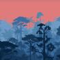 Vesele kratke sportske tajice Zalaz sunca u džungli