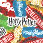 Весели мъжки свободни боксерки Harry Potter ™ Заклинания