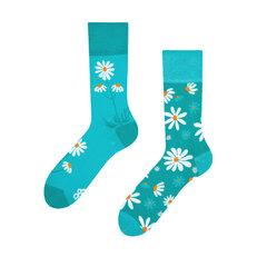 Lustige Socken Kamillen