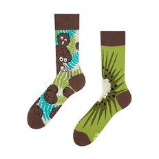 Lustige Socken Kiwi