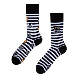 Veselé ponožky Kočky a pruhy