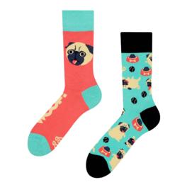 Veselé ponožky Mops