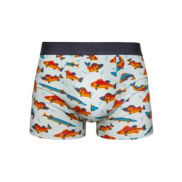 Veselé pánské boxerky Ryby