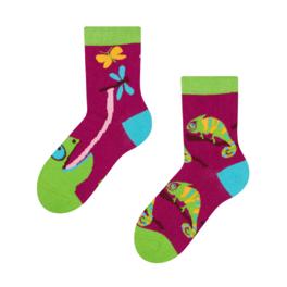 Detské veselé ponožky Chameleón