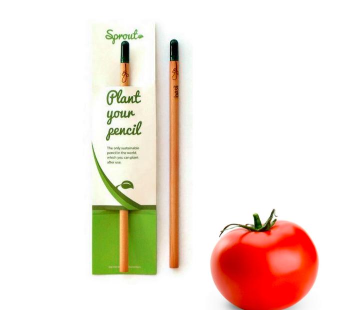 Plant Your Pencil – Cherry Tomato