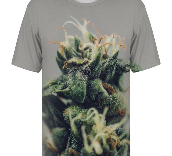 T-Shirt mit kurzen Ärmeln Zapfen