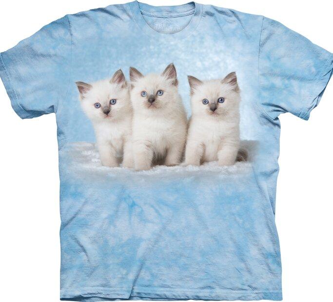 T-Shirt Kätzchen auf Wolke-