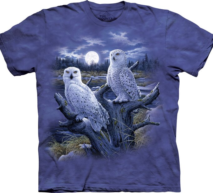 Snowy Owls Adult